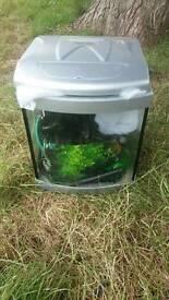 Aqua one fish tank and pump
