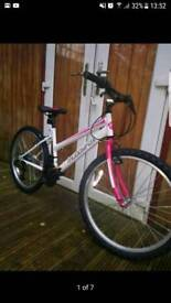 Muddyfox synergy 26 women bike