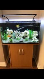 Aqua one fish tank and cabinet for sale