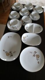 ROSEWIN DINNER SET