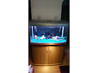 AQUA ONE AR-980 215 LITER FISH TANK WITH BEACH STAND,, EVERYTHING YOU NEED FOR SET UP