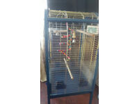 BLUE PARROT CAGE WITH SEED CATCHER AND TOYS