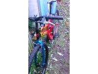push bike, bicycle