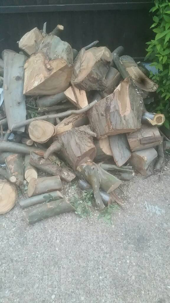 Wood wood woodin Aspley, Nottinghamshire - Wood whole lot for cheap price. Come and collect. Sorry cannot deliver