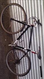Grater bike for sale