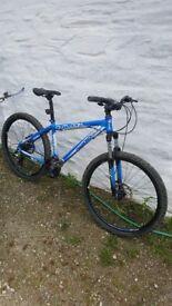 "Mountain Bike Diamondback 16: frame 26"" wheels"