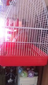 Hamster cages toys and accessories