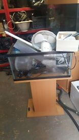 2.5 ft fish tank
