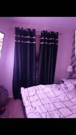 Curtains black/silver brand new