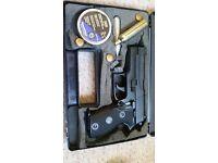 Rws mod c225 gas gun