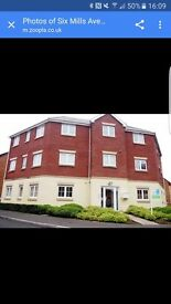 2 double bedroom apartment in Gorseinon.... Bryngwyn Village