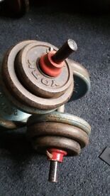 Cast iron dumbbells 2 x 25 kg 50kg