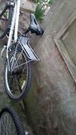 Women's giant tourer bike