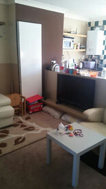 Beautiful NEWLY DECORATED Two Large Double Bed flat, 2min to Station CLEAN & MODERN