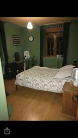 Luxurious furnished double bedroom at Lee Moor. Just 30 minutes from Town and colleges