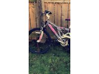 Girls 24 inch bicycle **excellent condition**