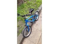 Boys Ridgeback MX16 bike