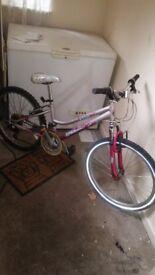 Girls/ small womens bike