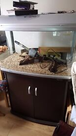 Aquarium Tank (AR850) with thermostatic water heater & plinth, with gravel, driftwood & accessories