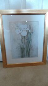 Frame Floral Pictures in excellant condition.