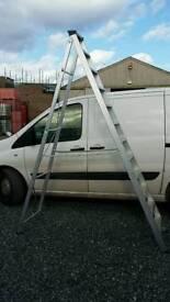 12 tread step ladder