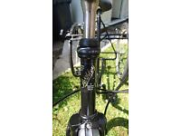 Pashley adult tricycle