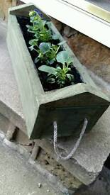 Small wood planters