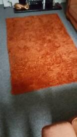 Large shag pile rug
