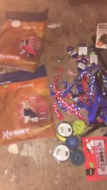 Job lot dog and pet toys and accessories