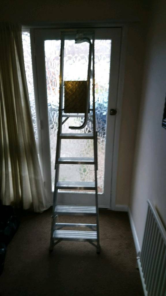 5 tread ladder