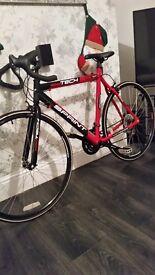 Brand new adults road bike