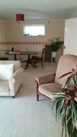 Double Room in Lovely 2 Bed Flat