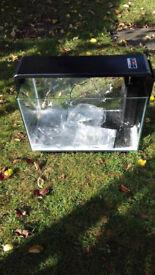 Aquarium /fish tank