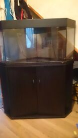 Juwel corner fish tank and black unit