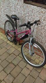 Appolo vivid girls mountain bike,18 speed