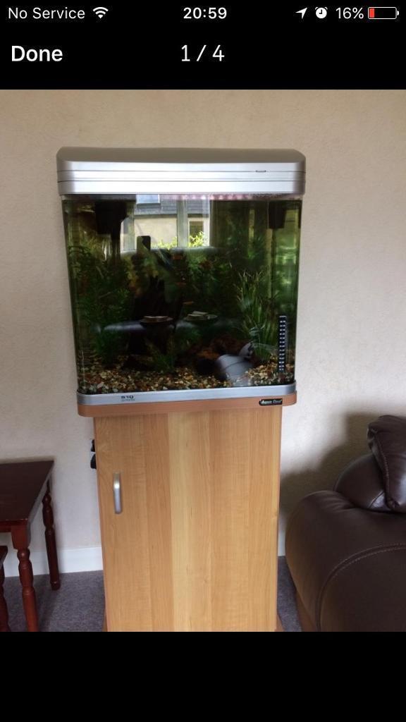 Aqua One 510 Fish Tank