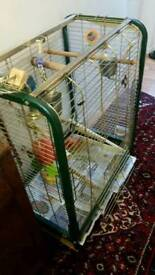 big cage for parrot or any bird with statues