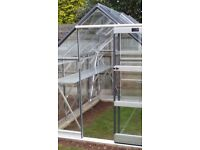New 8x6ft Elite Safety Glass Greenhouse
