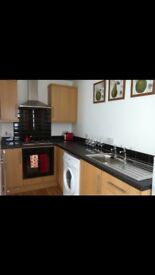 1 bedroom apartment for rent up ormesby bank ts7