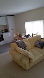 """Stunning 1 Bedroom """"Penthouse Style Flat"""" Quiet Spot just off Morley High st, Parking"""