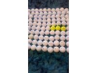95 nike golf balls