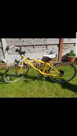 Apollo tempo racer bike