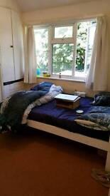 Room in Sutton