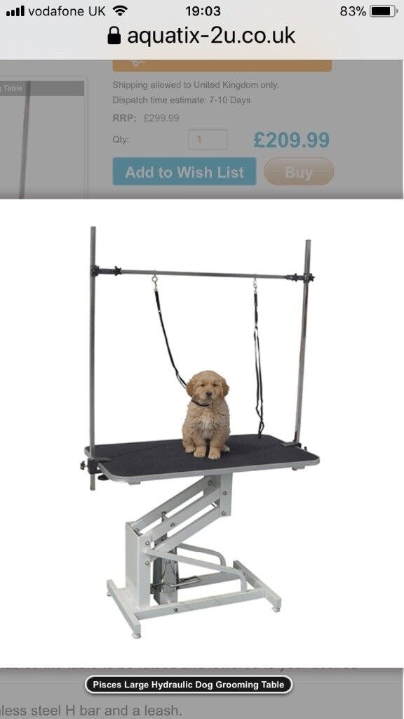 Large Hydraulic Dog Grooming Table