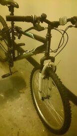 Bike, mountain bike bargin