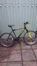 "Men's Black and Yellow Mountain bike, 21"" Frame"