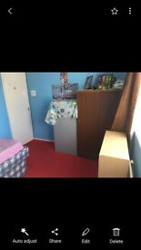 One double room and one single room for renting