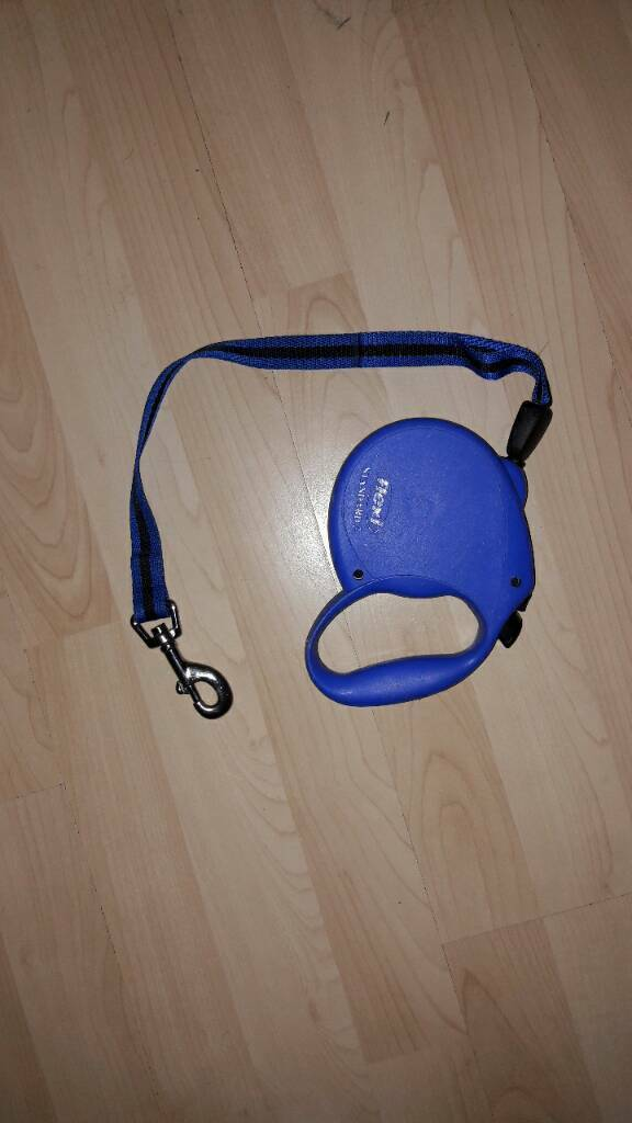 Brand new 3 metres blue extendable dog lead
