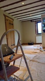 EXPERIENCE PAINTER AND DECORATOR.. ALL NORFOLK . FREE QUOTE . LUCAS..