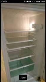 Tall fridge freezer